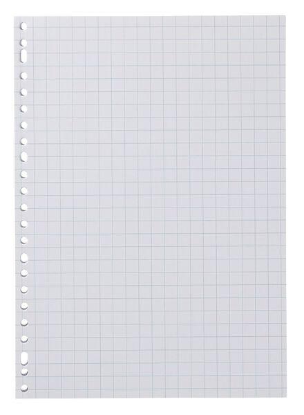 100-pak ringbandpapier geruit 10 x 10 cm - 14122302 - HEMA