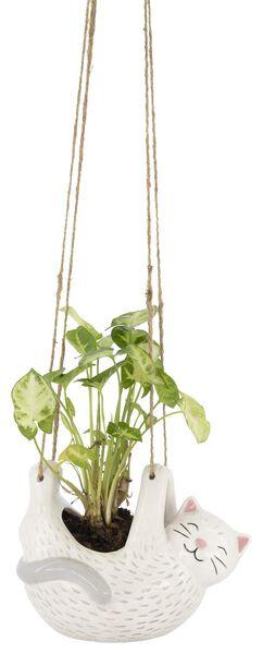 bloempot hangende kat - 61140018 - HEMA