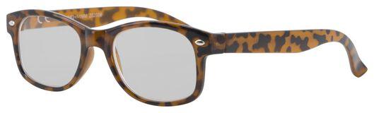leesbril kunststof +2.0 - 12500146 - HEMA