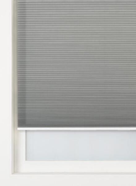 plissé dubbel lichtdoorlatend / gekleurde achterzijde 25 mm - 7430012 - HEMA