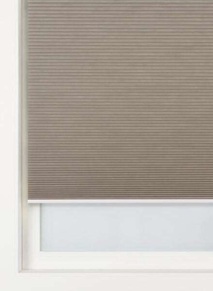 Plissé dubbel lichtdoorlatend / gekleurde achterzijde 25 mm