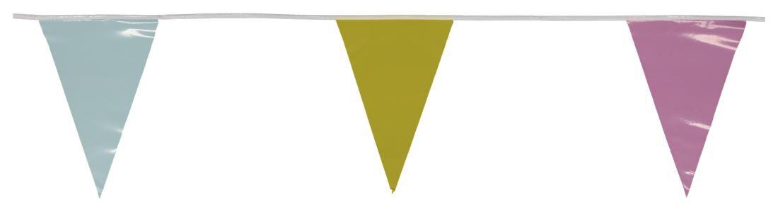 HEMA Vlaggenlijn 10 Meter (multicolor)