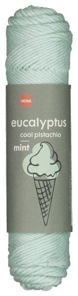 brei en haakgaren eucalyptus 50gr/83m mint mintgroen eucalyptus - 1400208 - HEMA
