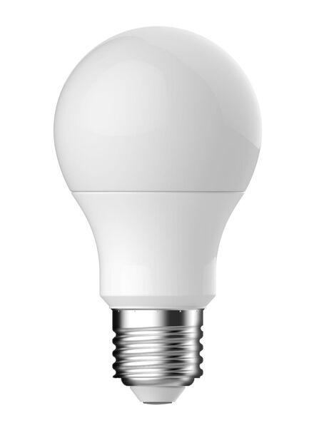 2-pak LED Kogellampen 5,3 watt - grote fitting - 470 lumen - 20090039 - HEMA