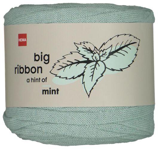 lintgaren 50m mint mintgroen big ribbon - 1400213 - HEMA
