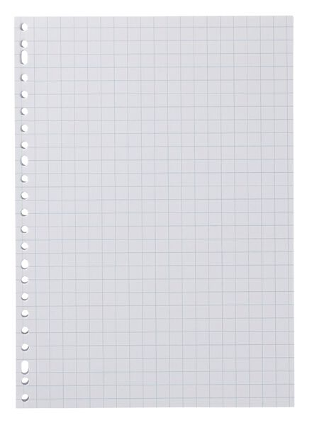 Ringbandpapier geruit 10x10mm - 100 stuks - in Papier