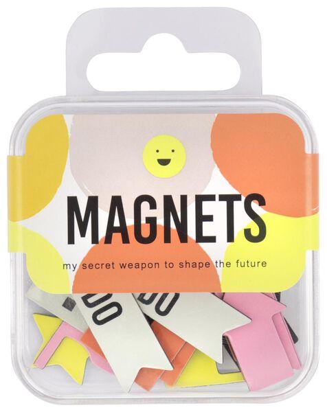 Magneten voor plannen 27 stuks