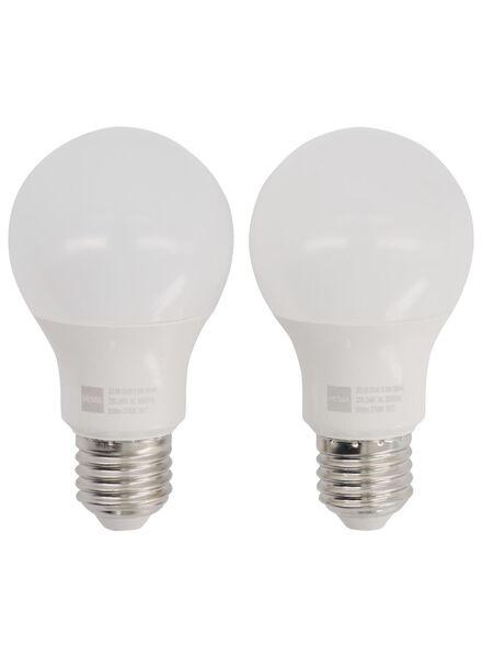LED lamp 60W - 806 lm - peer - helder - 2 stuks - 20090040 - HEMA