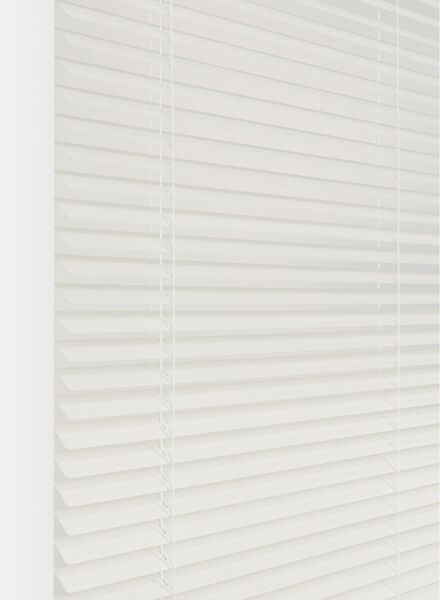 Dagaanbieding - jaloezie aluminium zijdeglans 25 mm dagelijkse koopjes