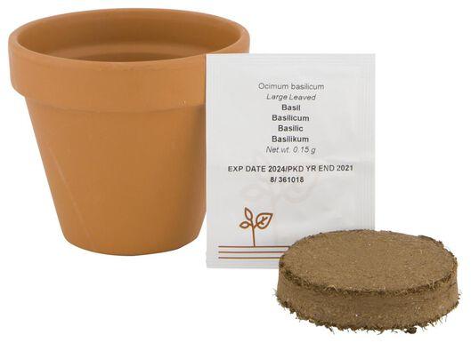 basilicum in pot Ø9cm - 41810268 - HEMA