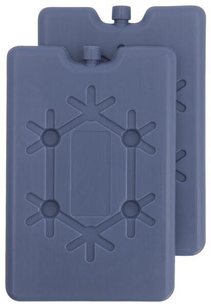 koelelement 16x11x1.5- 2 stuks - 41820345 - HEMA