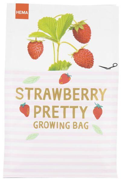groeizak aardbeien - S - 41810078 - HEMA
