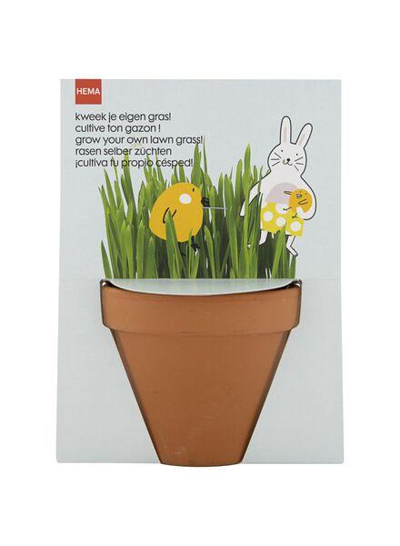 plantzaad voor gras - 25820134 - HEMA
