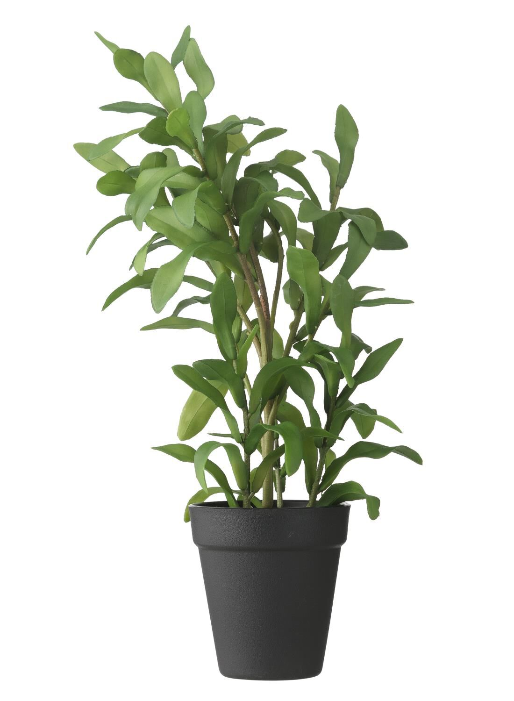 HEMA Kunststof Plant 40 Cm