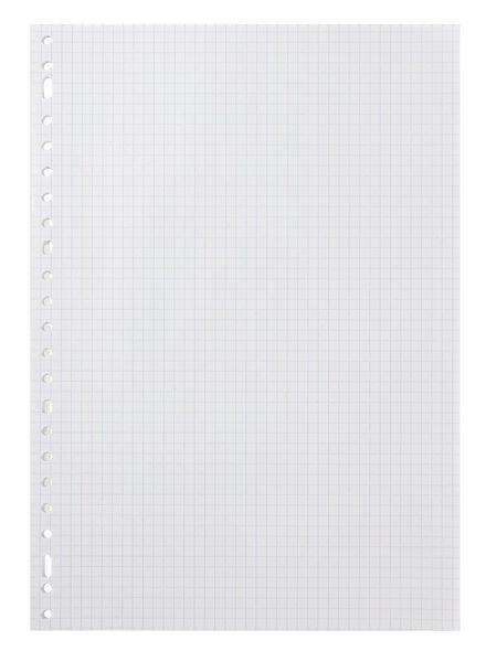 ringbandpapier ruit 5 mm A4 - 14130051 - HEMA