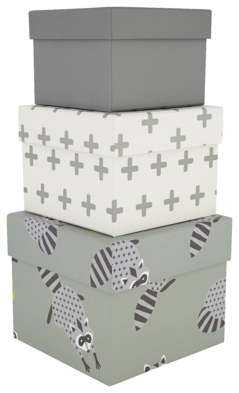 HEMA Kartonnen Dozen Wasbeer 3 Stuks