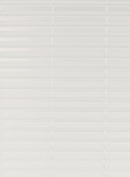 jaloezie PVC 50 mm wit PVC 50 mm - 7420105 - HEMA