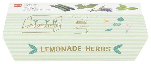 kweekset limonadekruiden - 41810101 - HEMA