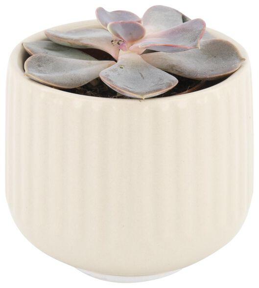 bloempot Ø7.3x6.5 - aardewerk - gebroken wit - 13322020 - HEMA