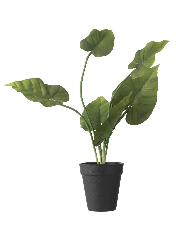 HEMA Kunststof Kaasplant 40 Cm