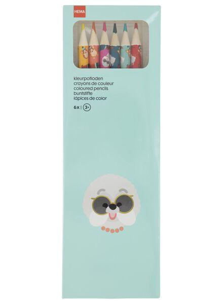 kleurpotloden - 6 stuks - 15950029 - HEMA