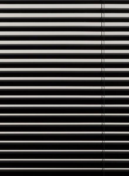 jaloezie aluminium hoogglans 25 mm - 7420025 - HEMA
